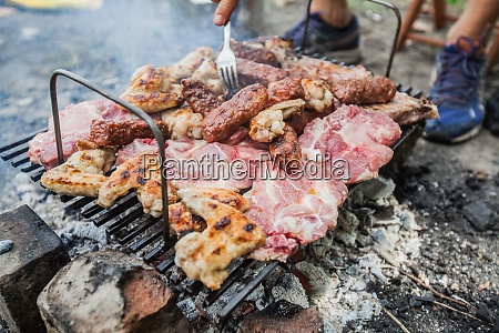 grilled meat summer picnic