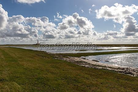 salt marsh at the westerheversand lighthouse
