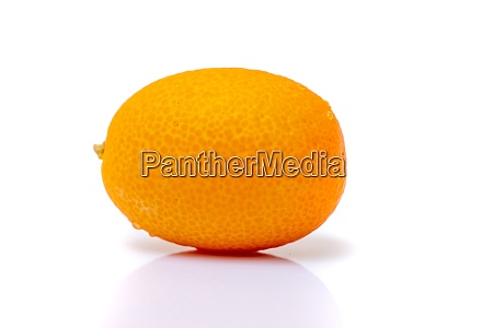 tiny tropical kumquat fruit
