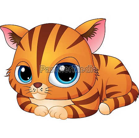cute kitten cartoon laying down