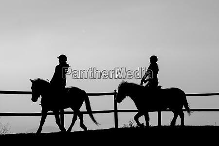 camargue horse riding