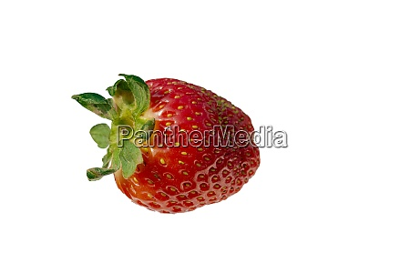 strawberries on white background isolated