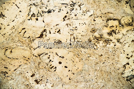 hardwood surface texture background rough grunge