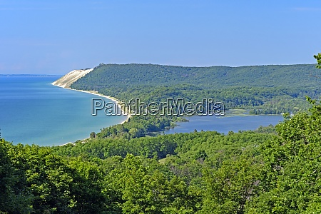 forested sand dunes on a sunny