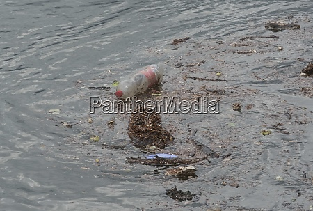 water pollution from plastics and waste