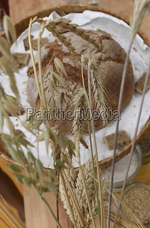 brown bread or wheat bread