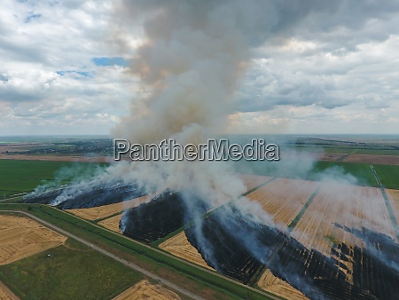burning straw in the fields of