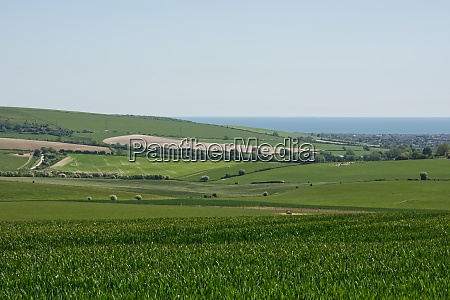 south downs countryside sussex england