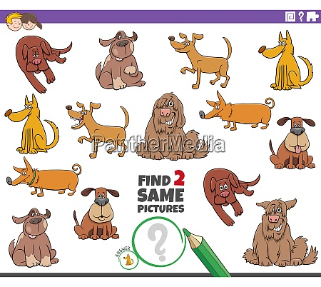 find two same dogs educational game