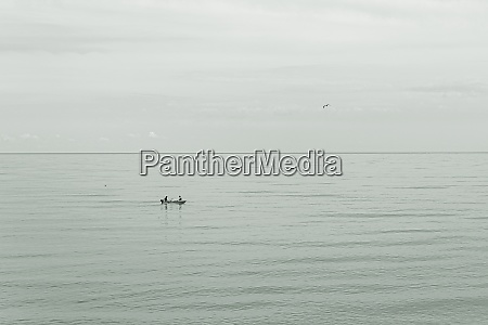the fishermen and the seagull