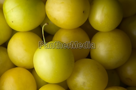 7 yellow mirabelle plums make