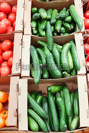 boxes with cucumbers in supermarket healthy