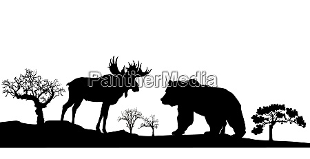 bear and elk black and white