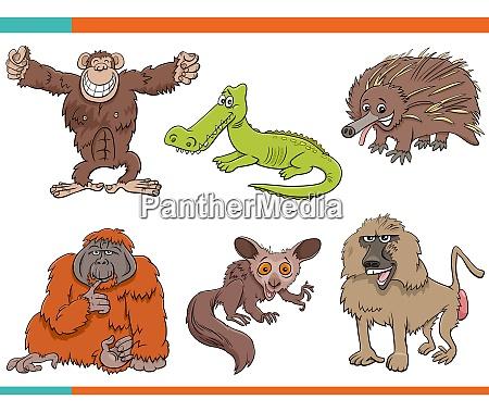 set of cartoon funny wild animals