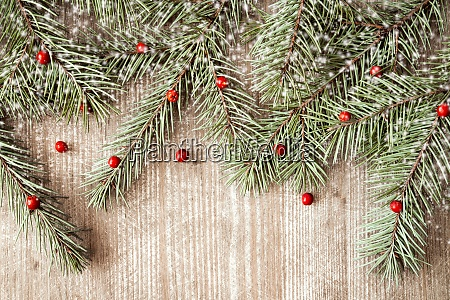 fir branches and viburnum berries