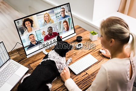 online video conference call