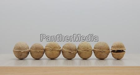 seven walnuts seven moods