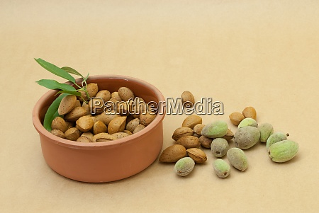 almonds with shell in a ceramic