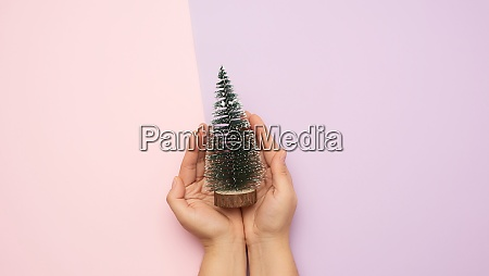 hands holding christmas decor green tree