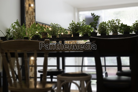 interior design shop lounge decoration