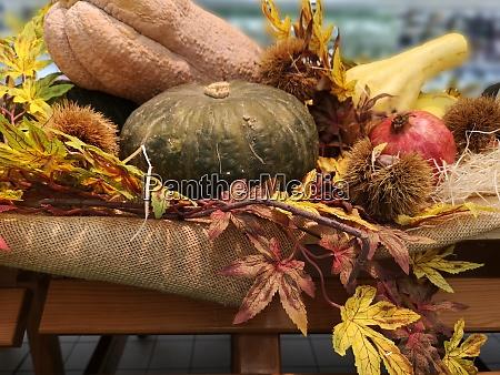 seasonal composition of still life vegetables