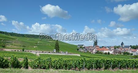 wine village of oger in champagne