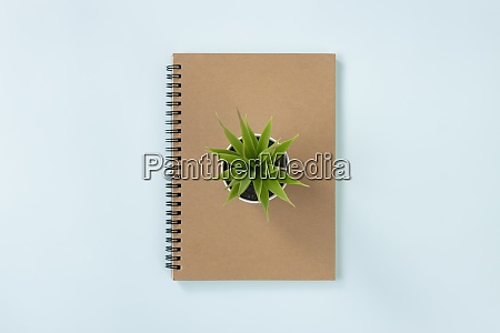 brown cover spiral notebook and office