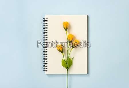 spiral notebook and 4 orange flowers