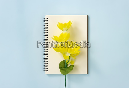 spiral notebook and yellow flowers at