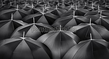 mass of black umbrellas