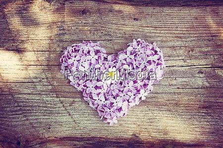 heart shaped flowers on wooden board
