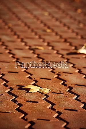 red pavement with leaf