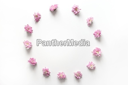 round frame with pink flowers bud