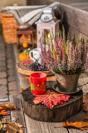 autumn garden decoration on terrace and
