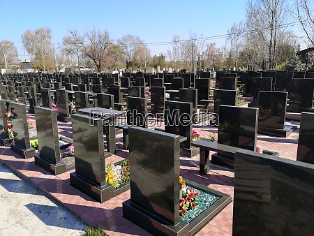 rows of cemetery monuments in black