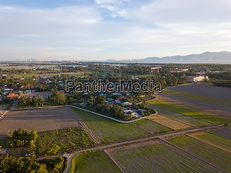 aerial view malays village around paddy