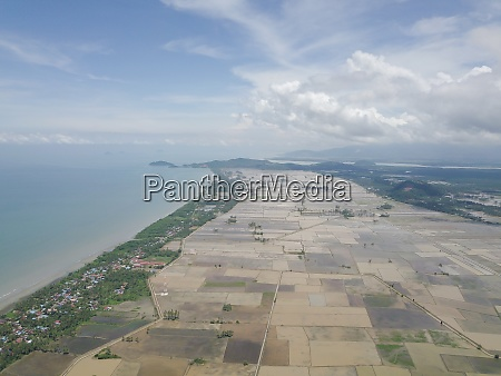 aerial view paddy field in water