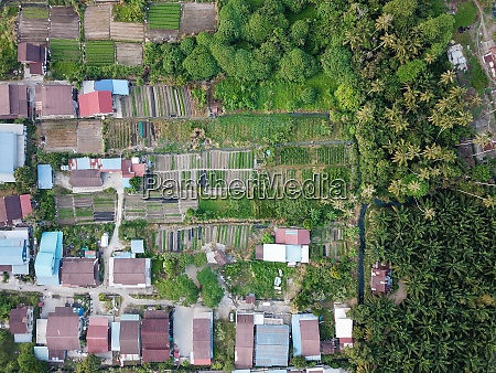 farmland from above near kampung house