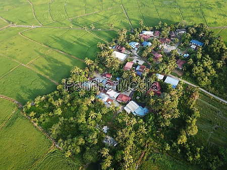 aerial view green scenery of kampung