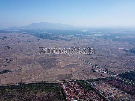 aerial view dry paddy field