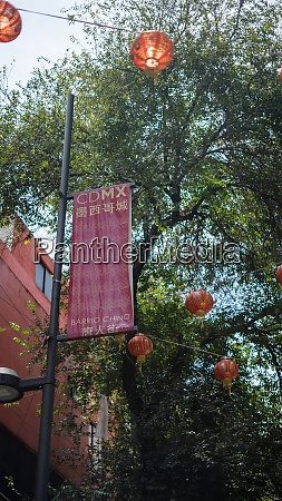 chinatown sign and tree surrounded by