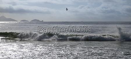 ocean, surf, on, the, beach, of - 29014633