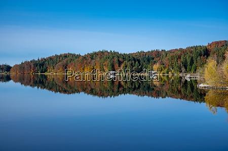 beautiful moor lake kirchsee in autumn