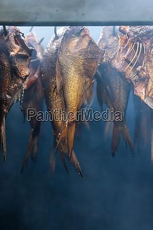 still life of smoked fish