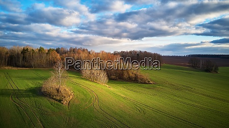 agricultural light and shadow background tranquil