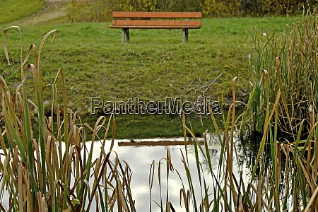 park bench at a pond in