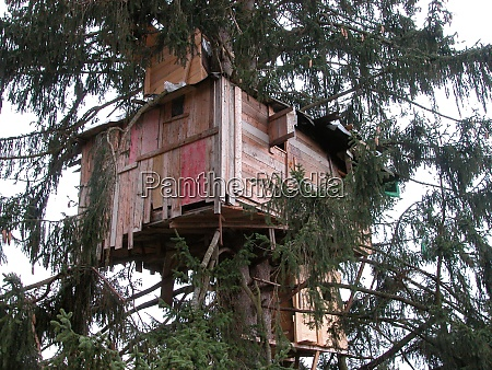 tree house in wood construction
