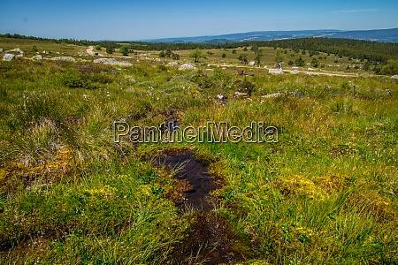 cevennes national park