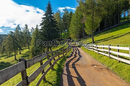 late summer on salten mountain south