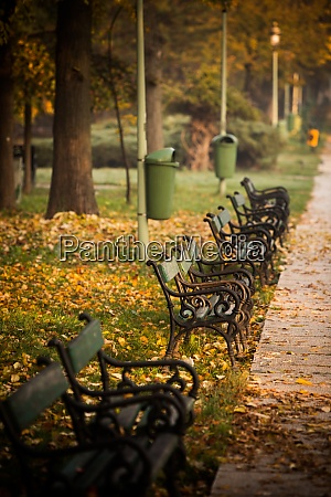 row of wooden benches in a